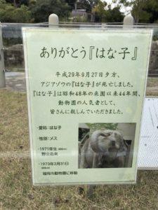 動物園前の最安値物件!動物好きにはたまらないお部屋が空きました!